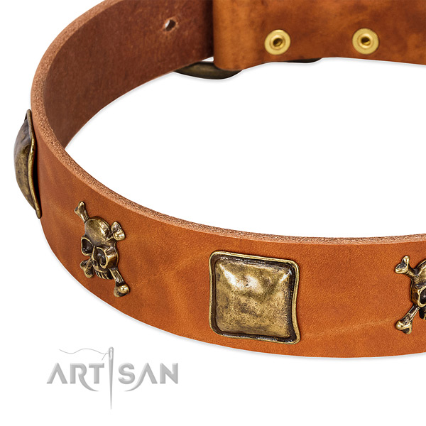 Fashionable leather dog collar with corrosion resistant embellishments
