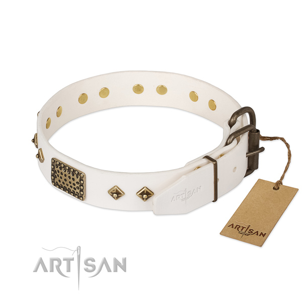 Full grain natural leather dog collar with rust resistant traditional buckle and studs