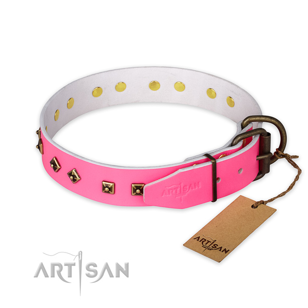 Reliable buckle on genuine leather collar for daily walking your four-legged friend