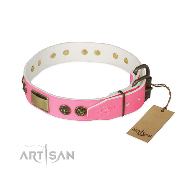 Durable embellishments on daily walking dog collar