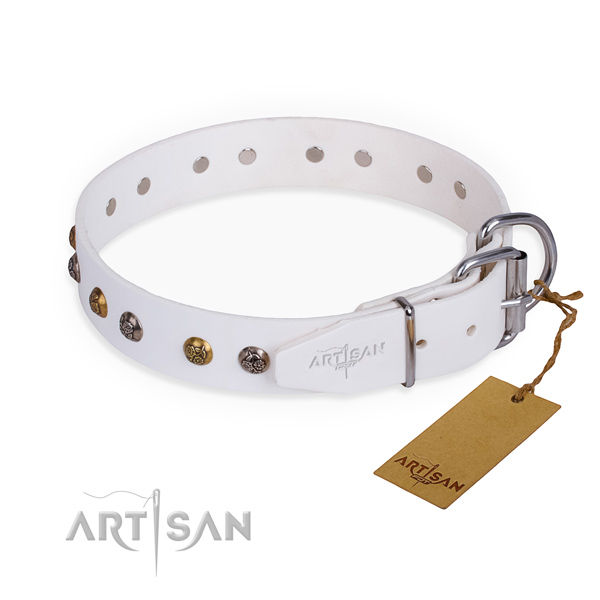 Genuine leather dog collar with exceptional corrosion resistant adornments