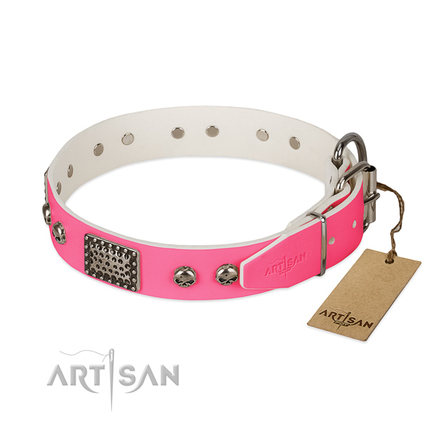 Corrosion proof hardware on stylish walking dog collar