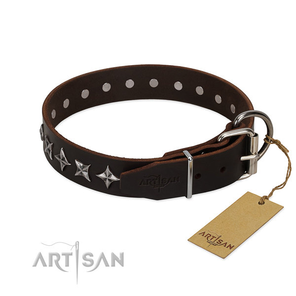 Everyday use studded dog collar of reliable genuine leather