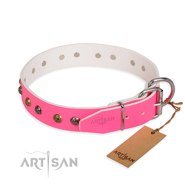 Full grain natural leather dog collar with stylish reliable adornments
