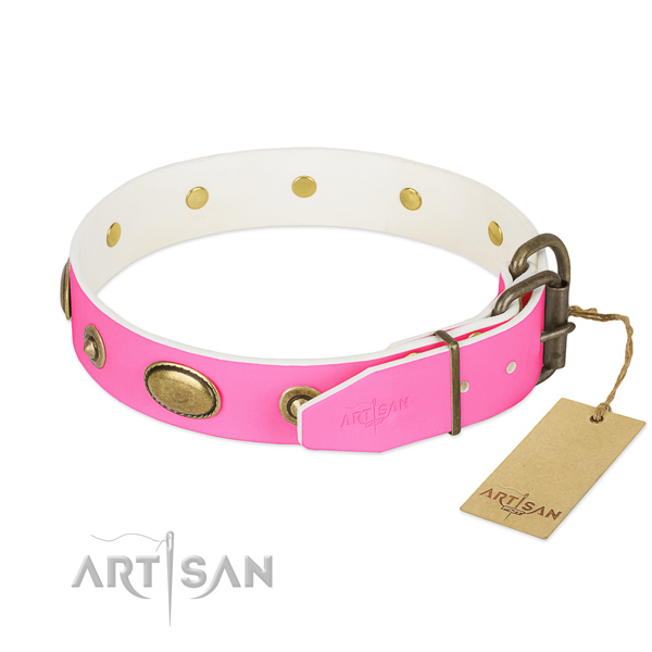 Corrosion proof embellishments on leather dog collar for your pet