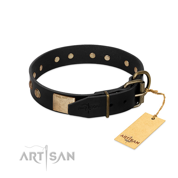 Durable embellishments on everyday use dog collar