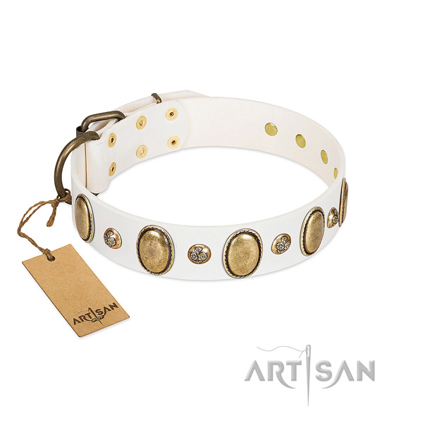 Leather dog collar of quality material with unusual studs