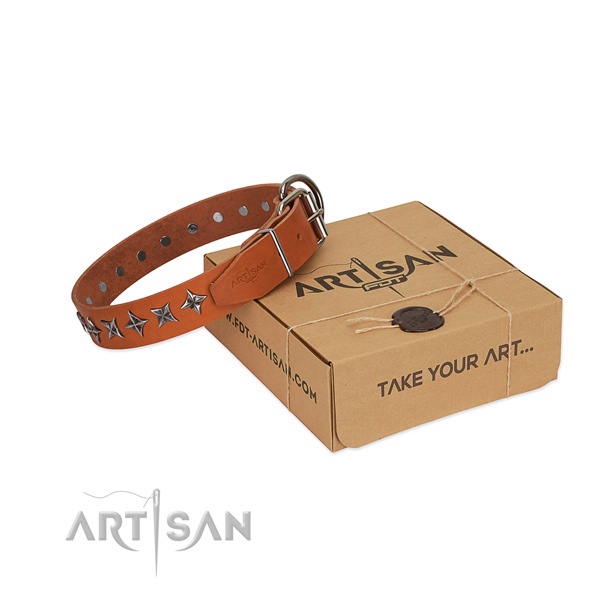 Comfortable wearing dog collar of best quality full grain natural leather with studs