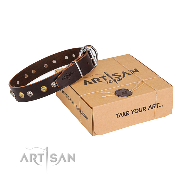 Strong leather dog collar crafted for daily use