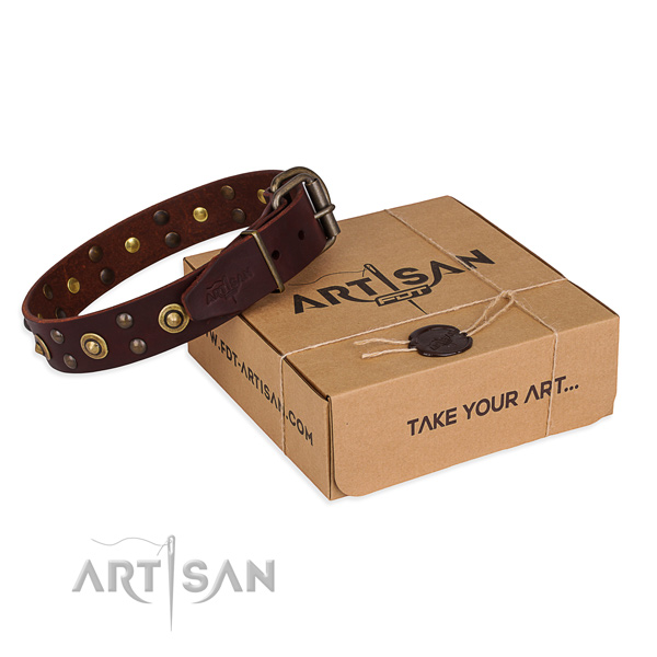 Rust resistant fittings on full grain natural leather collar for your beautiful four-legged friend