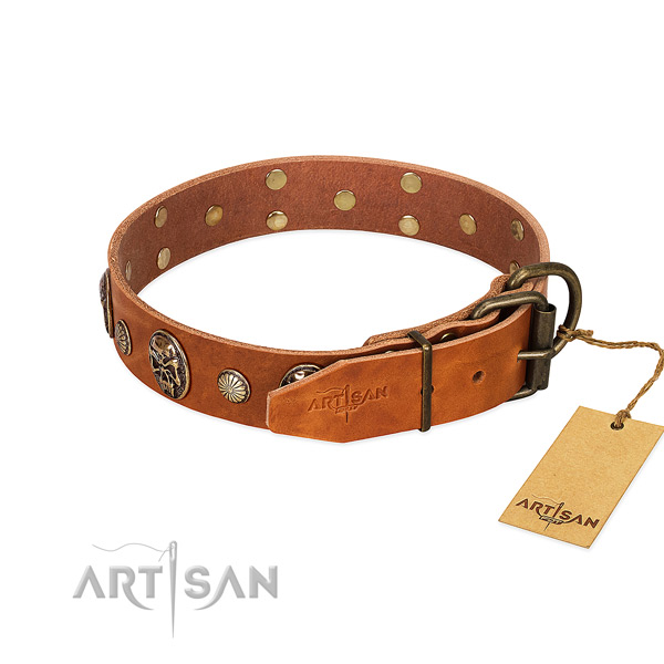 Durable fittings on leather collar for walking your doggie
