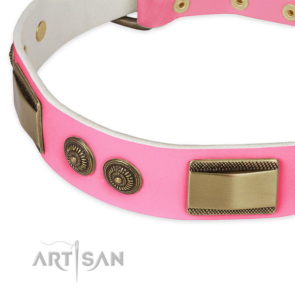 Leather dog collar with adornments for daily use