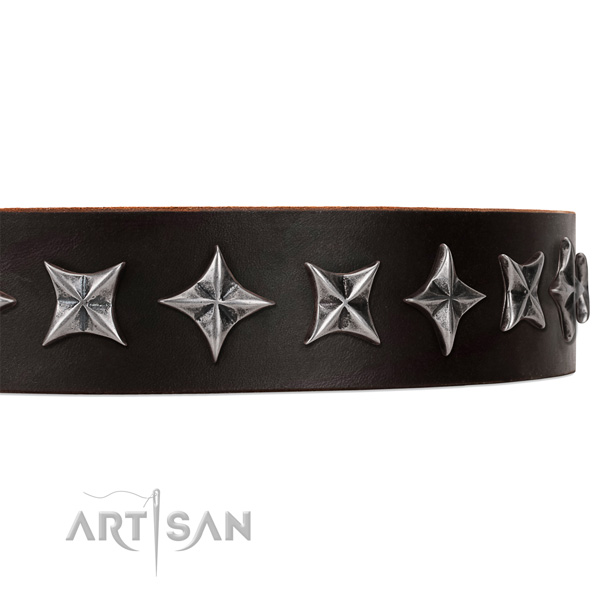 Fancy walking embellished dog collar of high quality natural leather