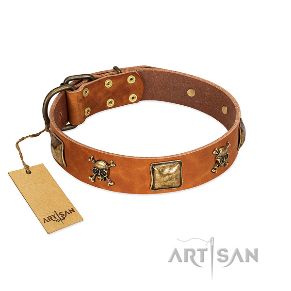 Awesome full grain leather dog collar with reliable decorations