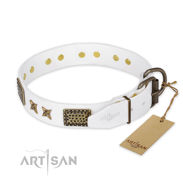 Reliable hardware on leather collar for your attractive pet
