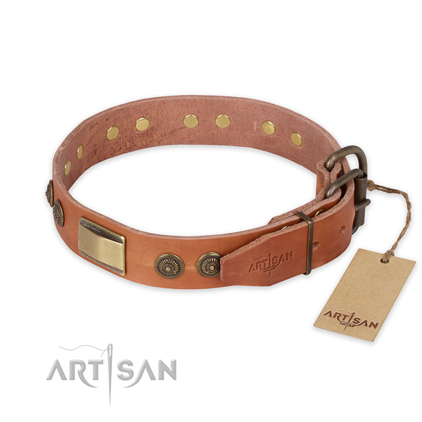 Corrosion proof traditional buckle on full grain natural leather collar for everyday walking your dog