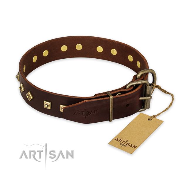 Reliable buckle on leather collar for daily walking your pet