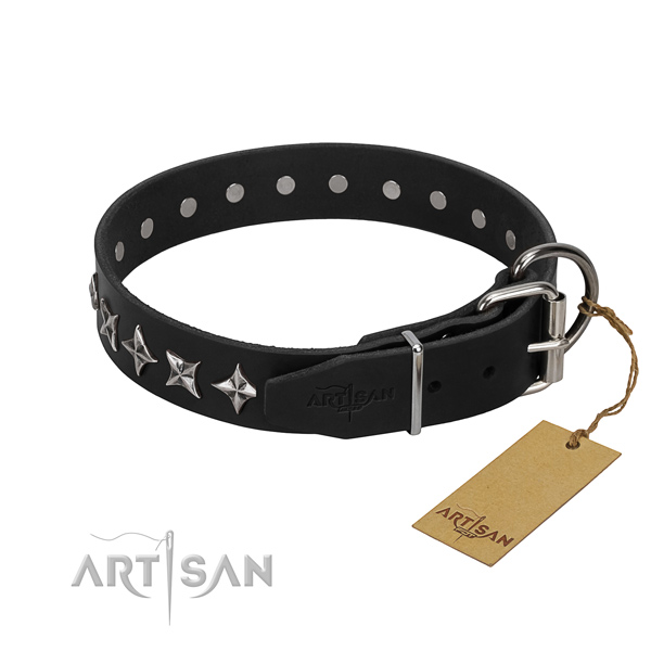 Comfortable wearing adorned dog collar of reliable full grain natural leather