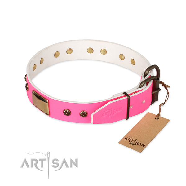Full grain leather dog collar with reliable buckle and embellishments