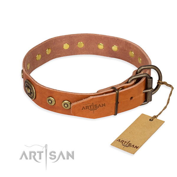 Full grain leather dog collar made of best quality material with rust-proof embellishments