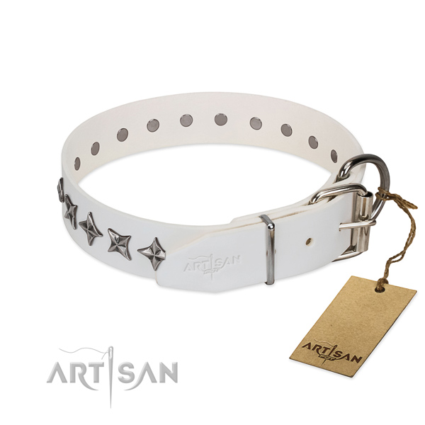 Best quality full grain leather dog collar with impressive decorations