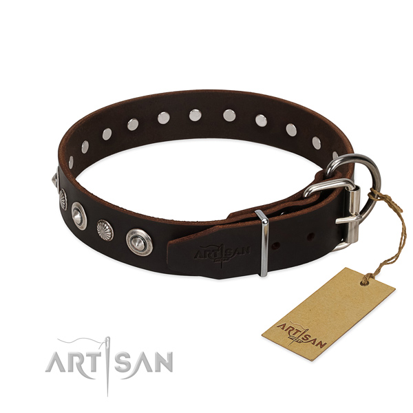 Fine quality natural leather dog collar with unusual adornments