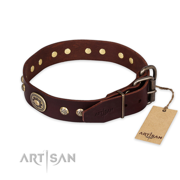 Durable buckle on full grain genuine leather collar for basic training your dog