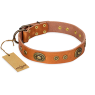 """Dandy Pet"" FDT Artisan Handcrafted Tan Leather Sharpei Collar"