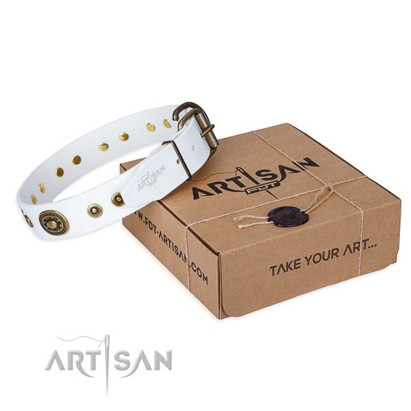 Natural genuine leather dog collar made of gentle to touch material with durable traditional buckle