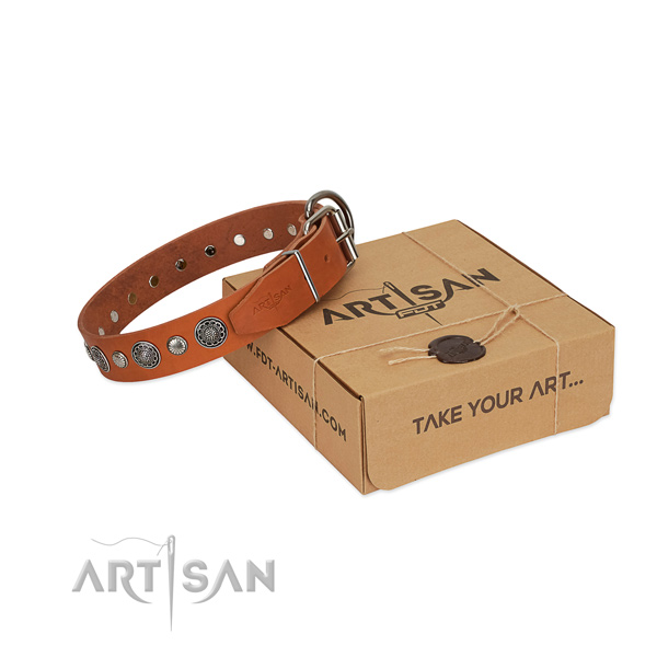 Leather collar with corrosion resistant fittings for your stylish doggie