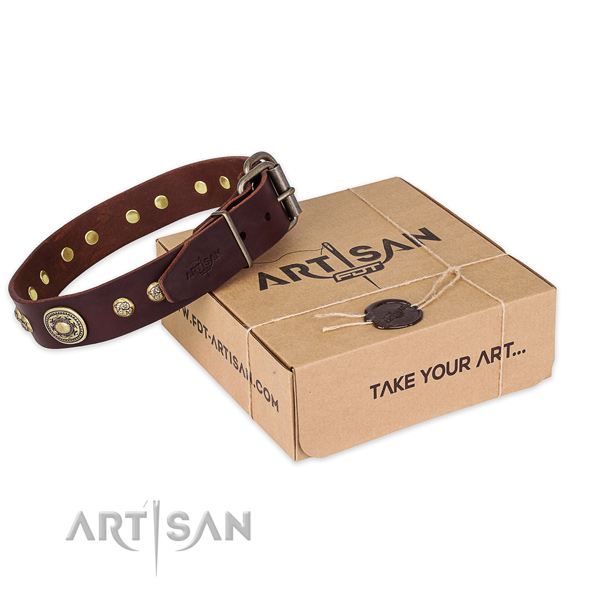 Durable traditional buckle on genuine leather dog collar for walking