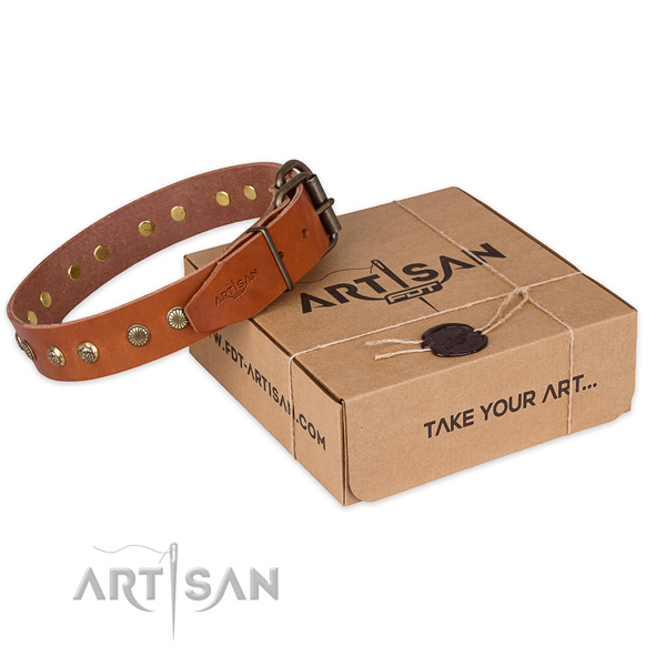 Reliable traditional buckle on full grain genuine leather collar for your impressive canine