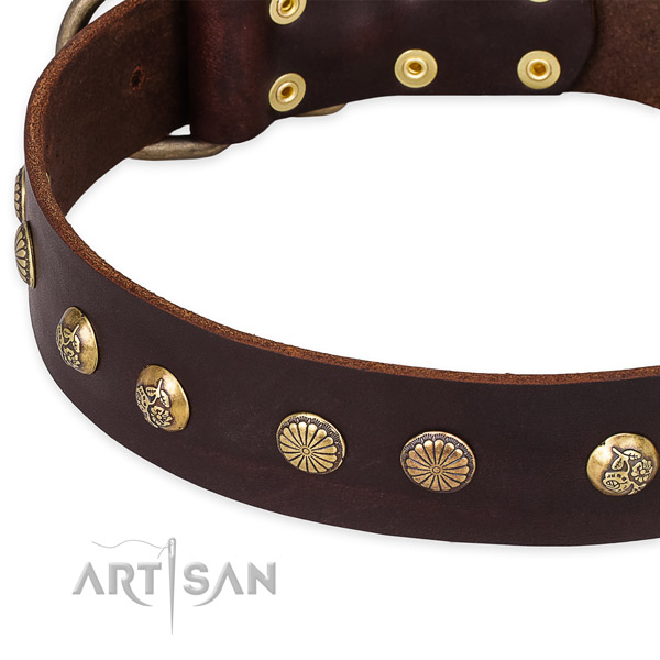 Genuine leather collar with reliable buckle for your beautiful doggie