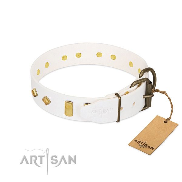 Quality leather dog collar with strong fittings