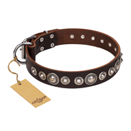 """Step and Sparkle"" FDT Artisan Glamorous Studded Brown Leather Sharpei Collar"