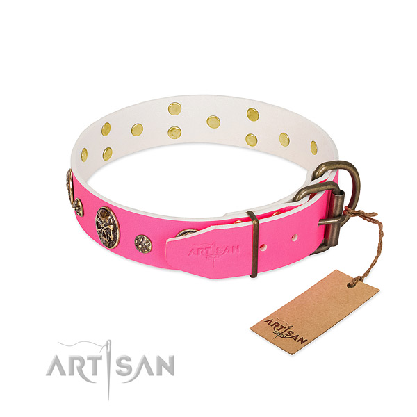 Reliable buckle on genuine leather collar for everyday walking your pet