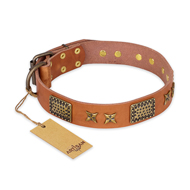 """Cosmic Traveller"" FDT Artisan Adorned Leather Sharpei Collar with Old Bronze-Plated Stars and Plates"