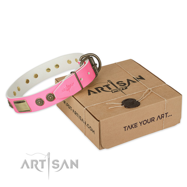 Strong embellishments on dog collar for daily use