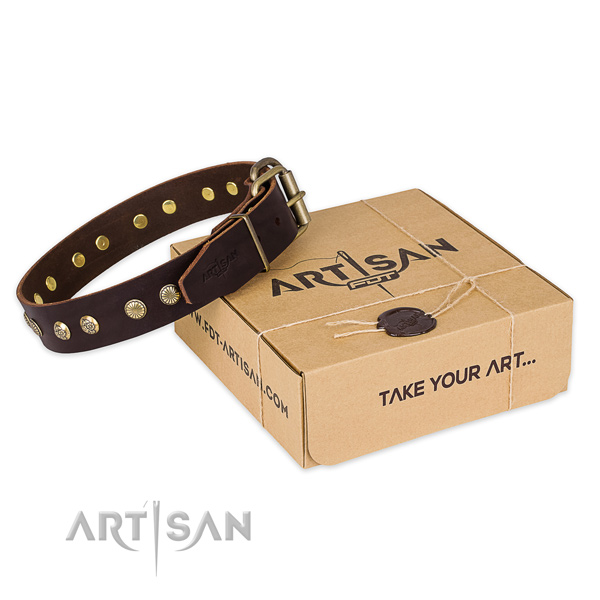 Corrosion resistant hardware on full grain leather collar for your impressive dog
