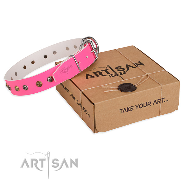 Fancy walking dog collar with Amazing strong adornments
