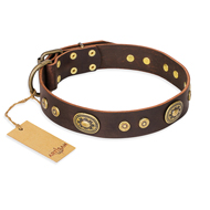 """One-of-a-Kind"" FDT Artisan Handmade Decorated Brown Leather Sharpei Collar"