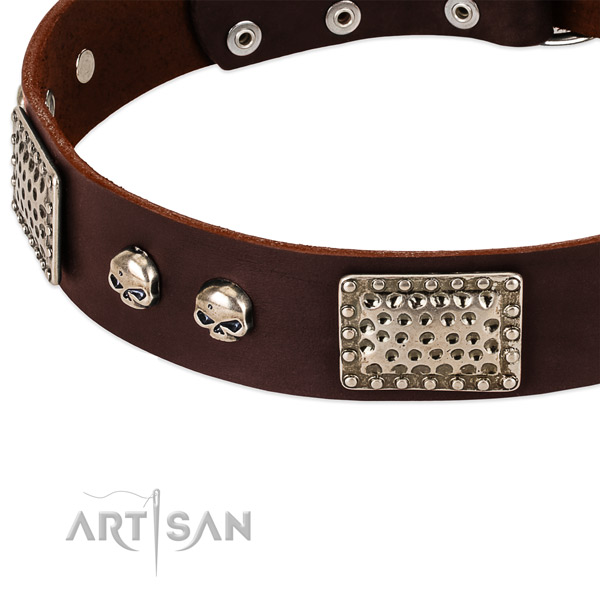 Rust-proof decorations on natural genuine leather dog collar for your canine