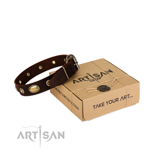 Rust resistant buckle on natural leather dog collar for your pet