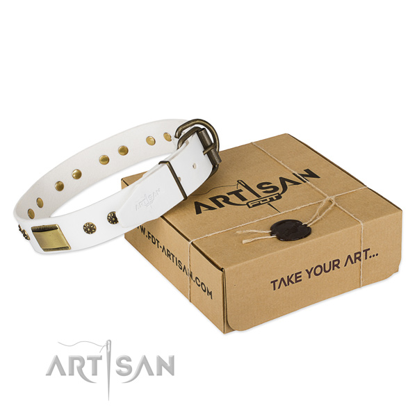 Exquisite genuine leather collar for your lovely dog