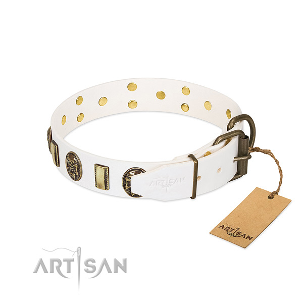 Strong D-ring on leather collar for walking your four-legged friend