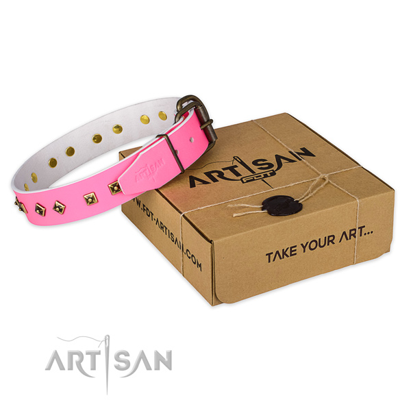 Reliable hardware on full grain leather dog collar for stylish walking