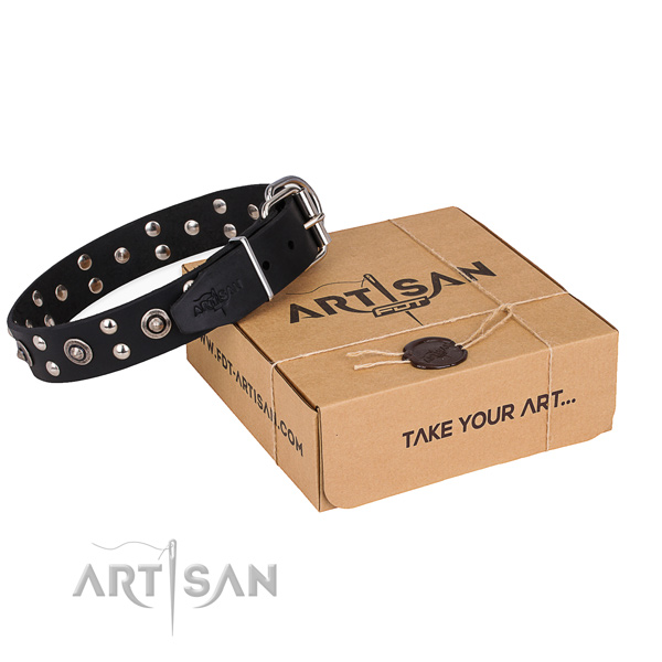 Daily walking dog collar with Exquisite rust-proof studs