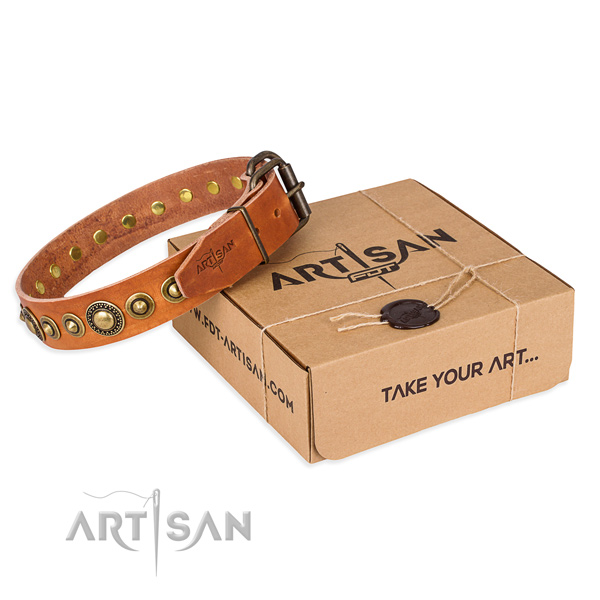 High quality full grain natural leather dog collar crafted for daily use