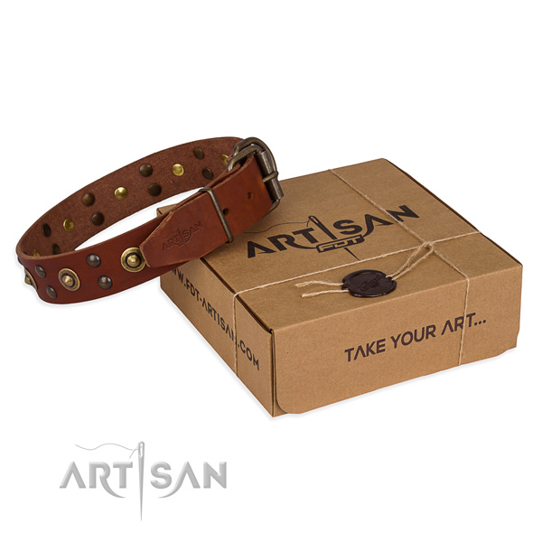 Reliable traditional buckle on full grain genuine leather collar for your beautiful pet