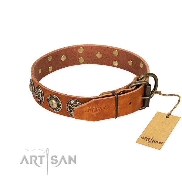 Strong hardware on basic training dog collar